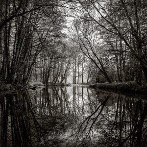 Serenity at dawn